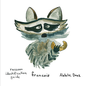 Francois the Raccoon - MAGNET
