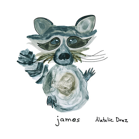 James the Raccoon - MAGNET
