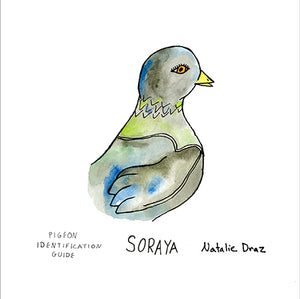 Soraya the Pigeon - MAGNET