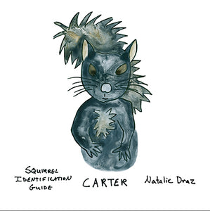 Carter the Squirrel - MAGNET
