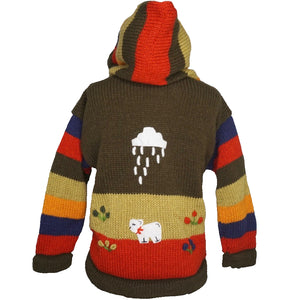 A Traditional Peruvian design - boy's country jumper in green with animals on.