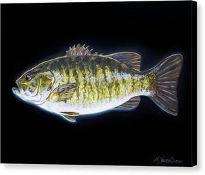 All About That Bass - Canvas Print