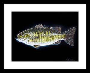 All About That Bass - Framed Print