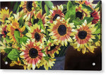Load image into Gallery viewer, Helianthus - Acrylic Print