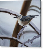 Load image into Gallery viewer, Nuthatch - Canvas Print