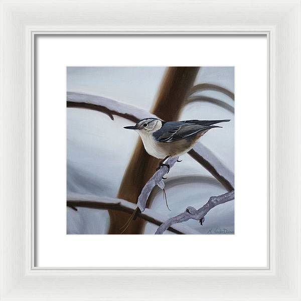Nuthatch - Framed Print