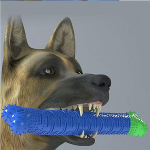 CHEWBRUSH Pet Molar Tooth Cleaning Brushing Stick - Paws & Pose