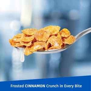 Kellogg's Frosted Flakes, Breakfast Cereal, Cinnamon, Family Size, 24 Oz