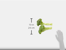 Load image into Gallery viewer, Organic Broccoli, One Head