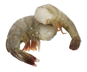 Frozen Raw Large Shell-On, Tail-On, Easy Peel Shrimp, 24 oz