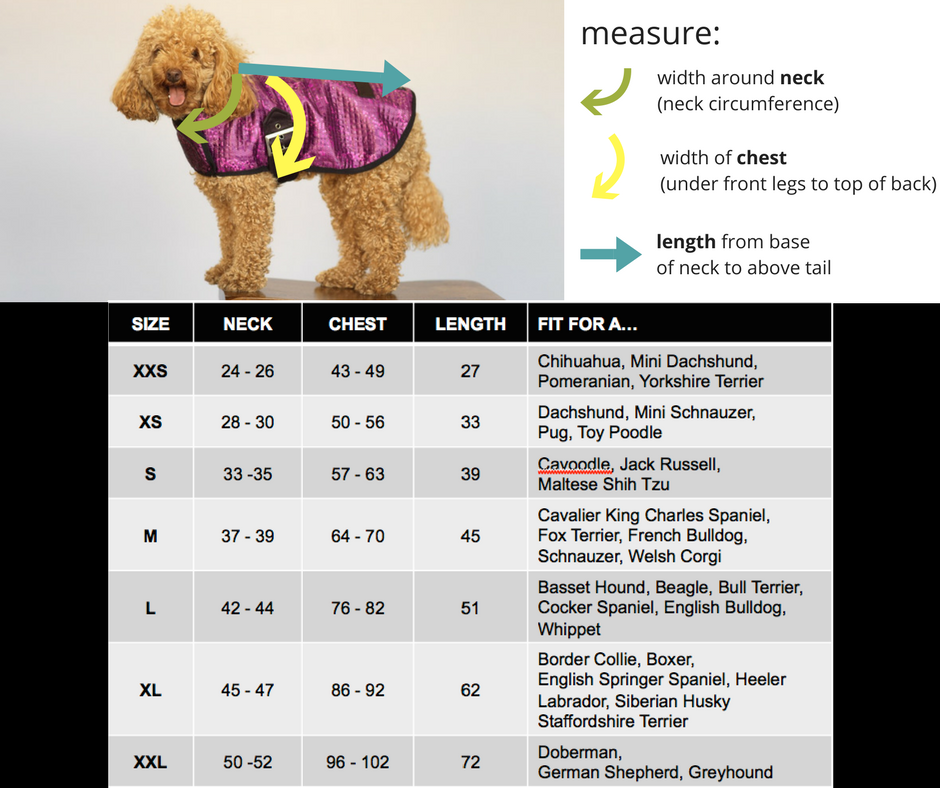 Active Creatures Pooch Size Chart