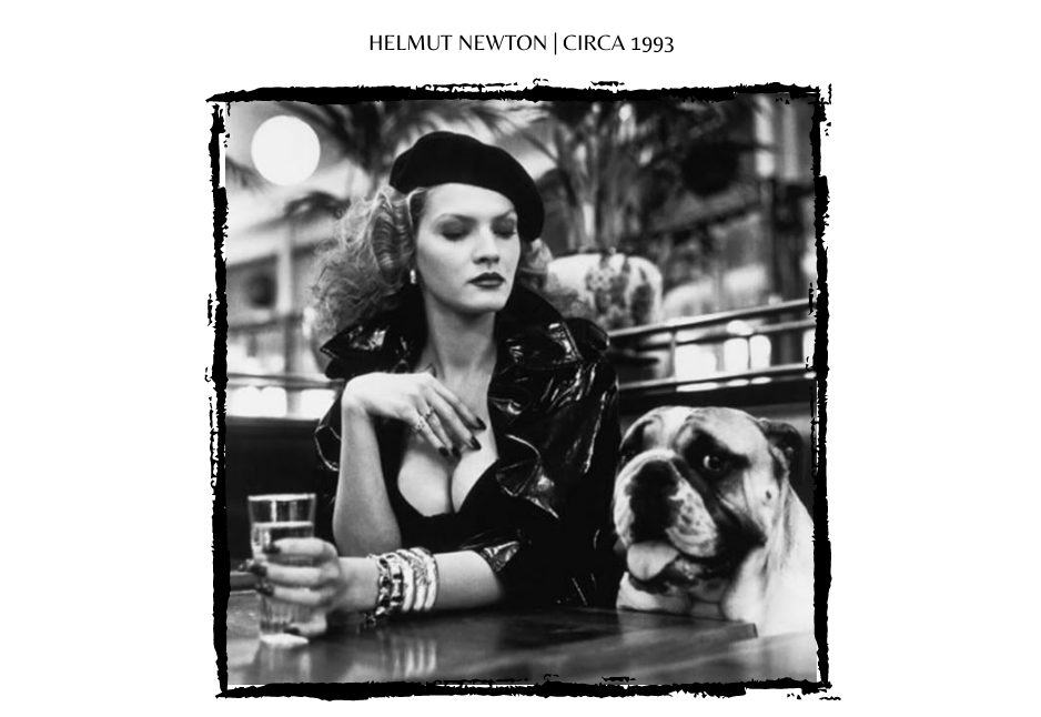 Helmut Newton Dogs in Fashion