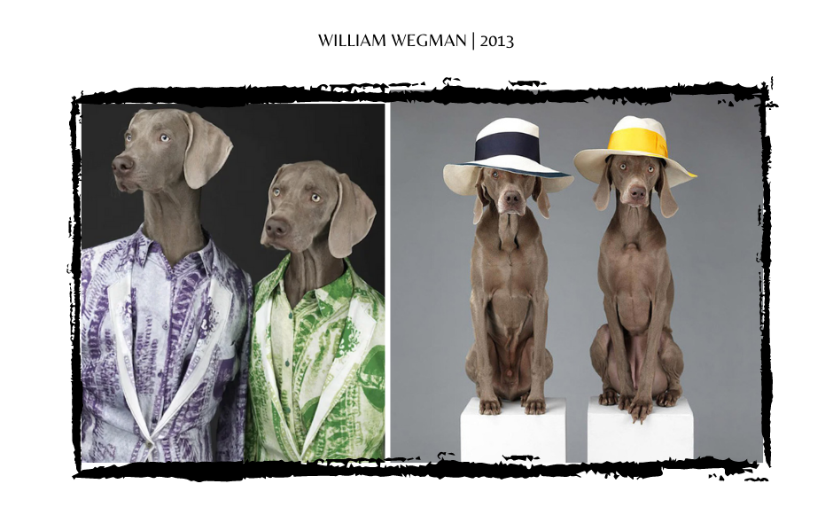 William Wegman Dogs through fashion history
