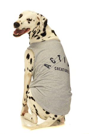 Balboa Muscle Dog Tank in Grey