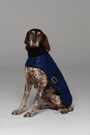 Side profile of Liberbarkce Dog Coat in Blue Zebra showing black strap with silver buckle that secures under chest. Snood scarf included.
