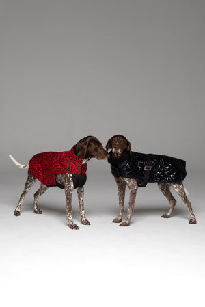 Animal Instinct Dog Jacket
