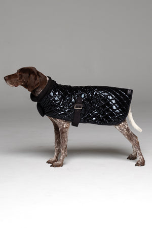 Alpha Dog Coat side profile showing buckle under belly and snood scarf.