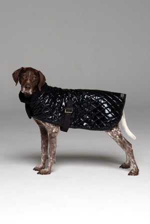 Alpha Dog Coat side of coat showing buckle under belly