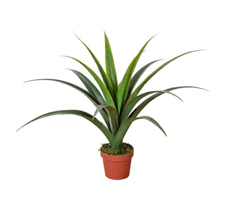 Artificial Dracaena Plants 80cm