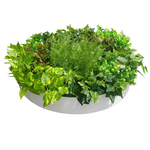 Artificial Green Wall Disc Art 80cm Mixed Fern (Fresh White)