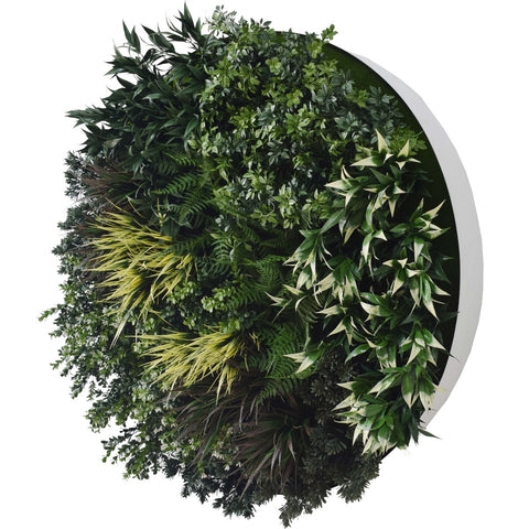 UV Green Field Green Wall Disc (White) 100cm