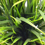 Artificial Ornamental Potted Dense Green Grass 38cm