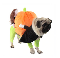 Pumple® Cat Dog Clothes Funny Pumpkin Pet Halloween Costumes