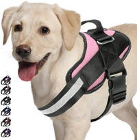 Vanguard Pro® Personalized No Pull Dog Harness