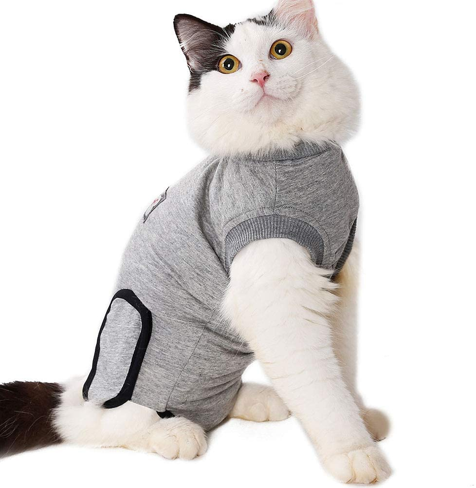 Safe Stance® Professional Pet Recovery Suit