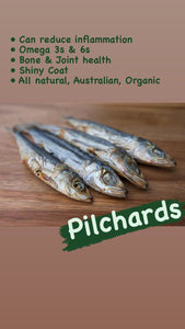 Pilchards - dehydrated dog treat