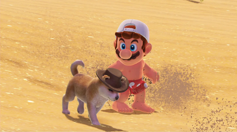 Mario in a bathing suit, walking along the sand with a puppy.
