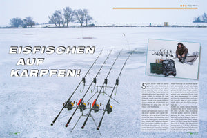 Carp from the ice hole - can not ? Then read on....