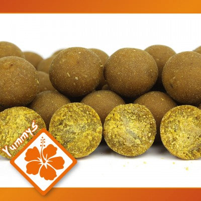 IB Carptrack Osmotic Oriental Spice Boilie - 2 kg / 16 mm
