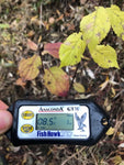 Fish Hawk GTM - Temperature and Depth Meter + 2 kg Boilies
