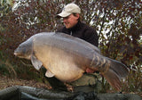 IB Carptrack Elite Boilie