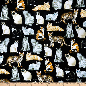 Timeless Treasures Assorted Realistic Cats Black