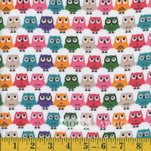 Multi Owls - Juvenile Prints