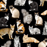 Load image into Gallery viewer, Timeless Treasures Assorted Realistic Cats Black