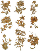 Load image into Gallery viewer, Floriani Embroidery Design Collection - Stems for Every Season by Walter Floriani