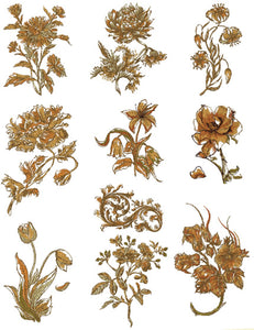 Floriani Embroidery Design Collection - Stems for Every Season by Walter Floriani