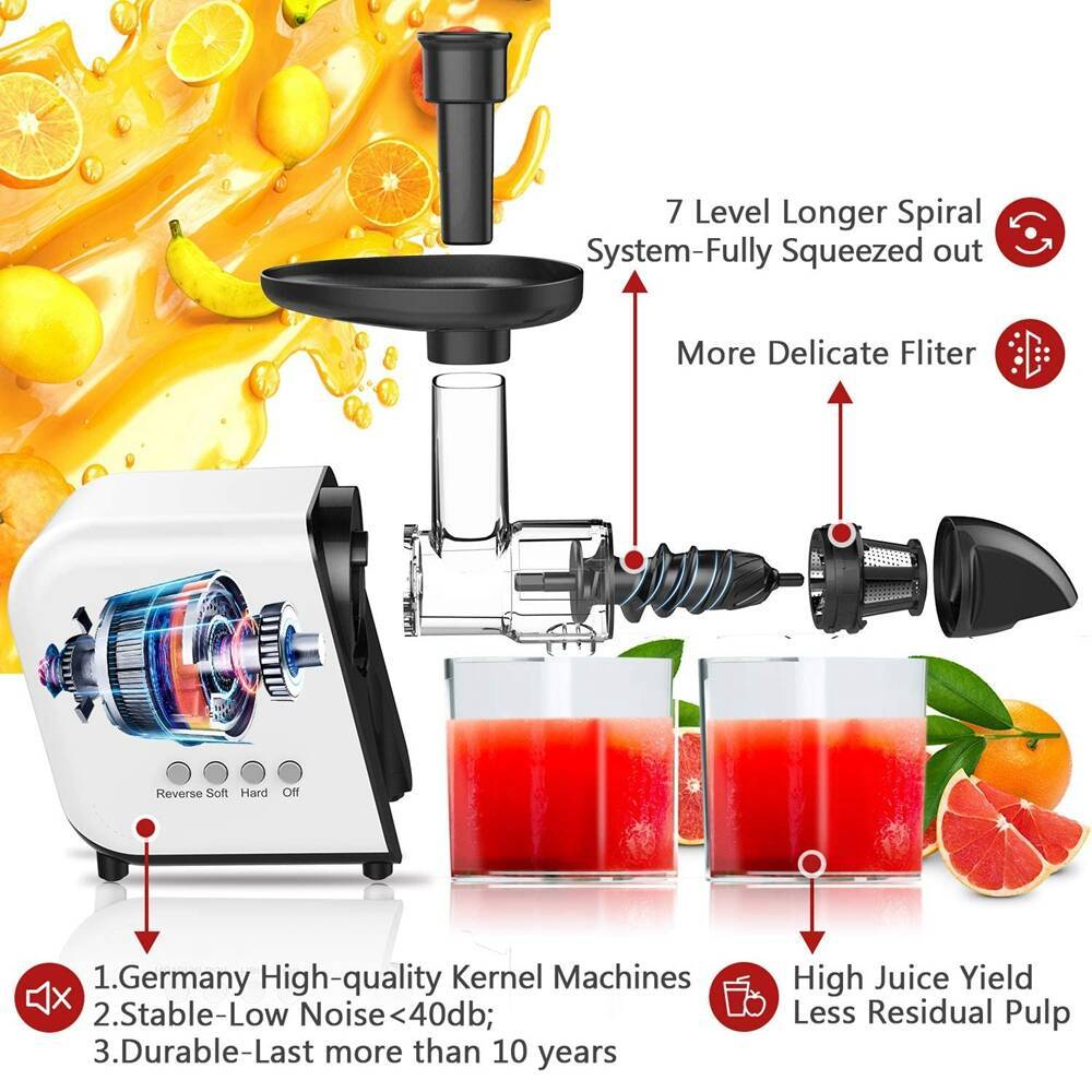 Koios B5100 Masticating Juicer with Reversible and Quiet Motor - Valuelink.shop