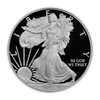 2011 Silver Eagle - West Point Proof - Original Government Packaging (OGP)