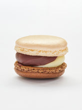 Load image into Gallery viewer, White chocolate and cobnut praline macaron
