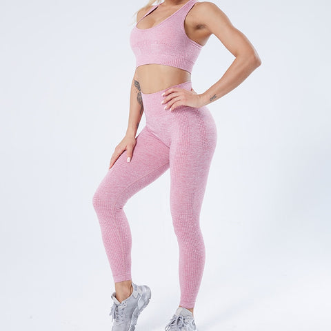High Waist Seamless Gym Leggings for Women, Great for Yoga, Running and Sports