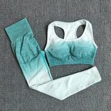 Women's Seamless Yoga Set with Sports Bra + High Waist Leggings for Sports, Workout