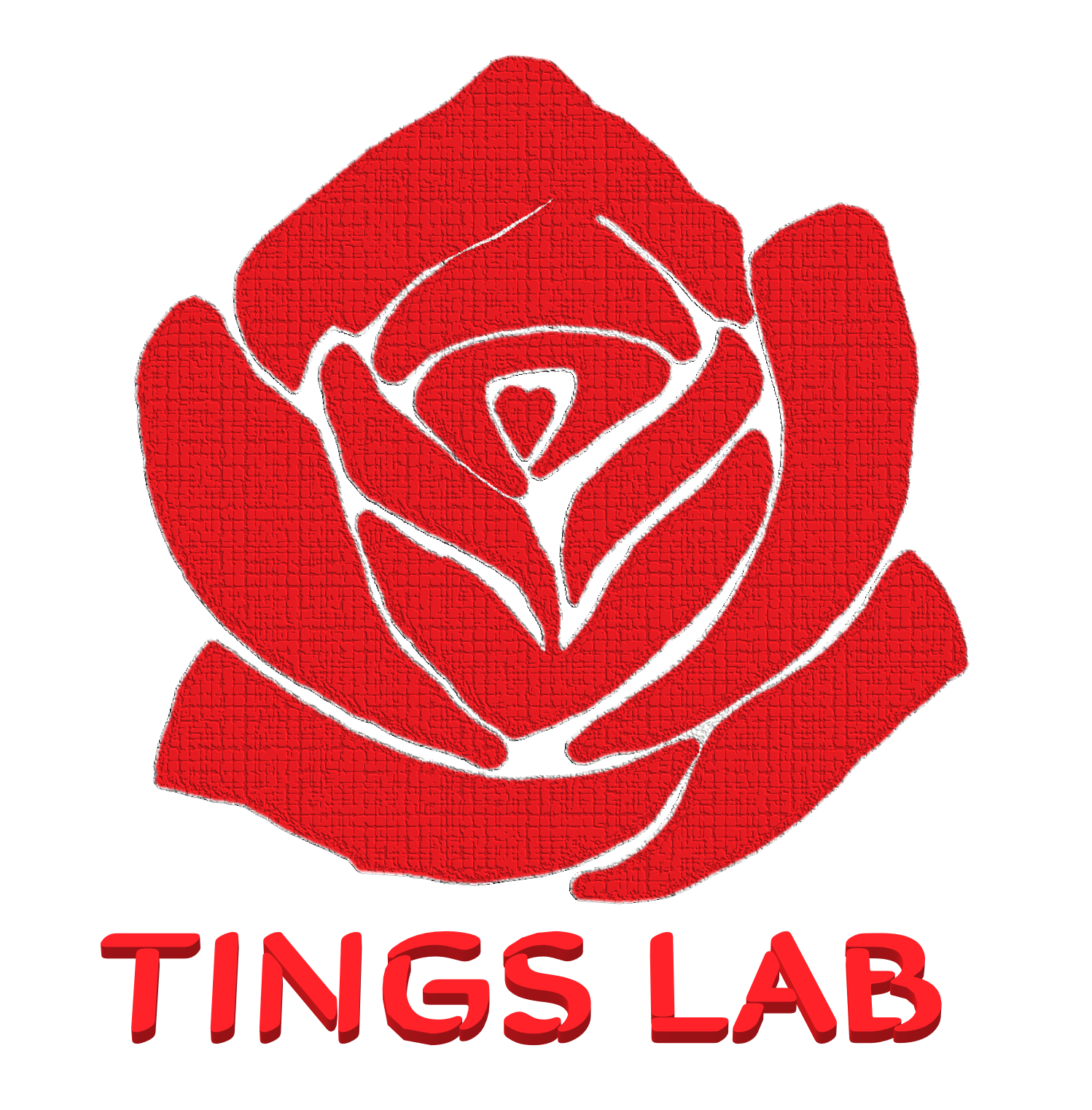 Beginning TINGS Lab
