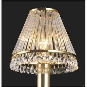 Tan Diyas IL30200 Crystal Clip-On Shade With Clear Glass Rods French Gold/Crystal
