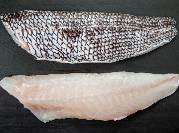 Rhode Island Black Sea Bass, 7-9oz Total, 1-2 Fillets