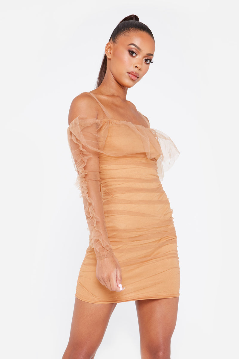 Organza Ruched Mini Dress in Nude