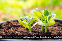 Best Organic Products That Support Plant Growth and Enrich Soil
